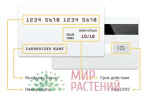 Правила оплаты картами-1