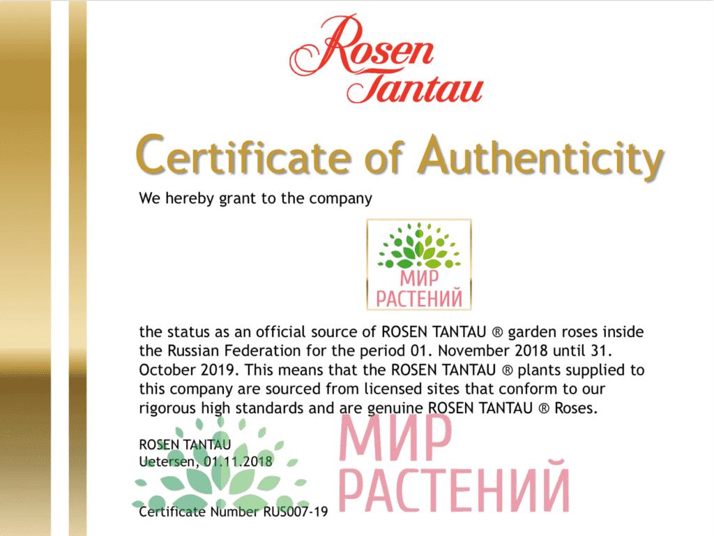 Официальный представитель Тантау в России - Мир Растений