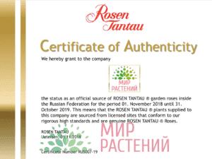 Сертификат. Официальный представитель Тантау в России - Мир Растений