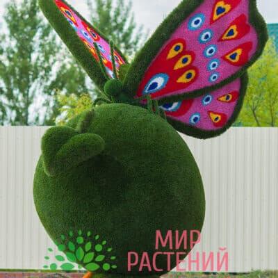 Топиарная фигура Бабочка на яблоке