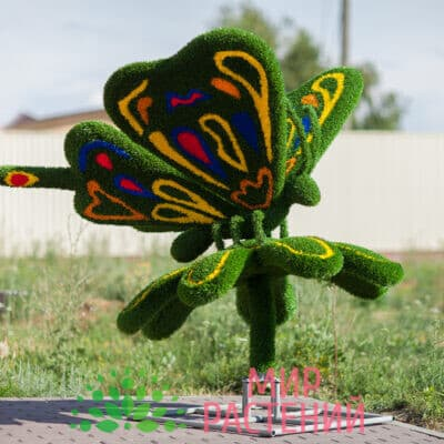 Топиарная фигура Бабочка на ромашке Ажур