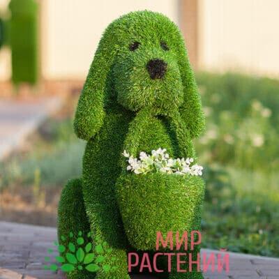 Топиарная фигура Собачка с корзинкой под цветы