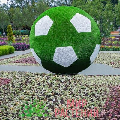 Топиарная фигура Мяч футбольный