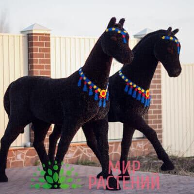 Топиарная фигура Конь черный