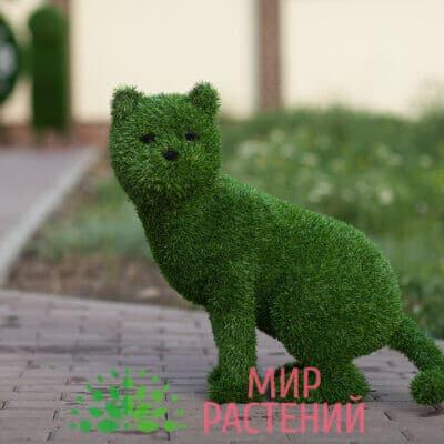 Топиарная фигура Кошка