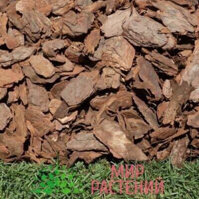 Кора лиственницы 60-100