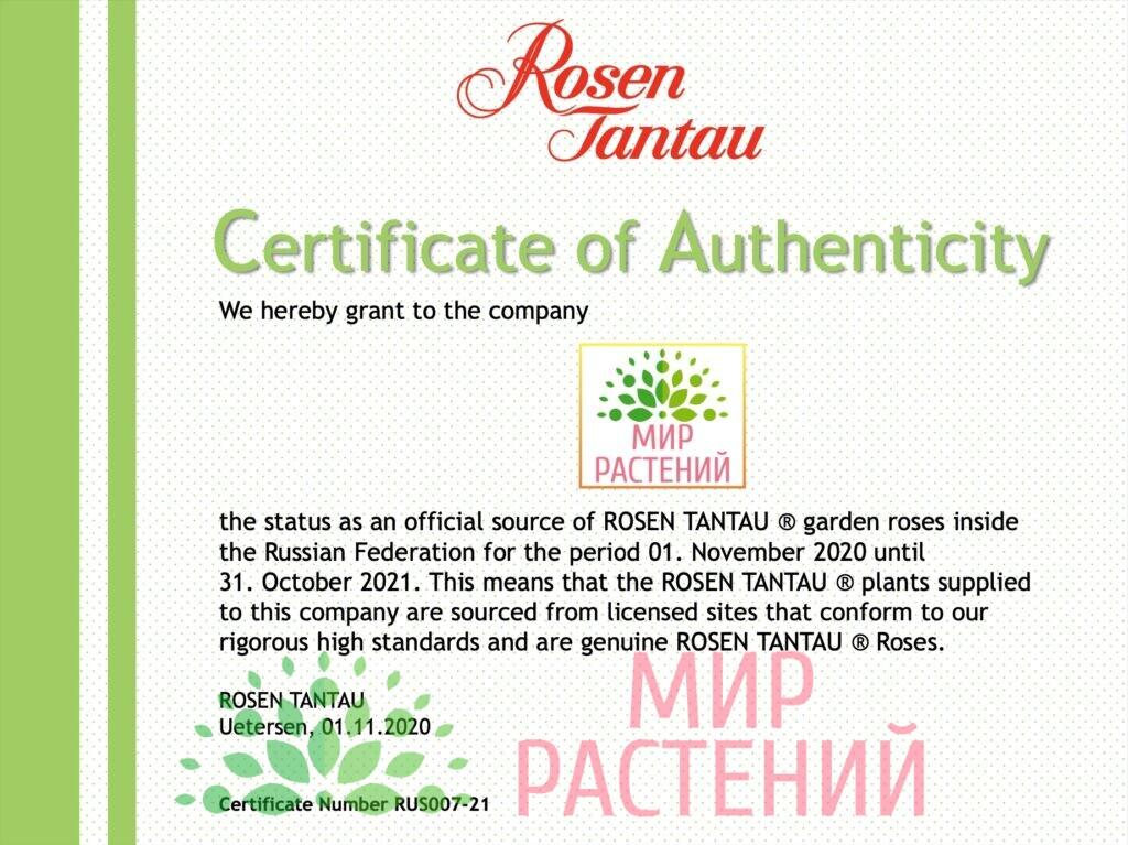 Сертификат Тантау 2021 Мир Растений